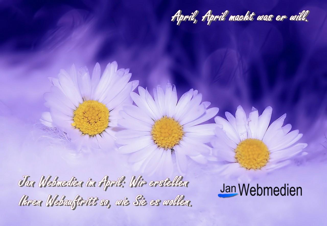 Jan Webmedien